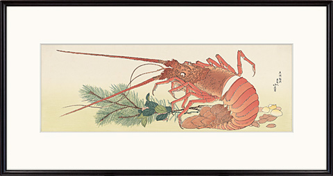 Lobster and Pinus
